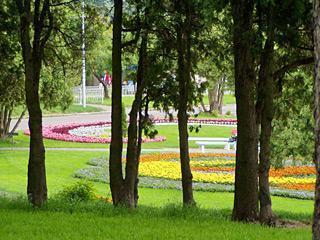 Комфортная зона отдыха для горожан появится в Ставрополе