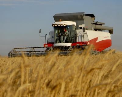 На Ставрополье началась уборка зерновых